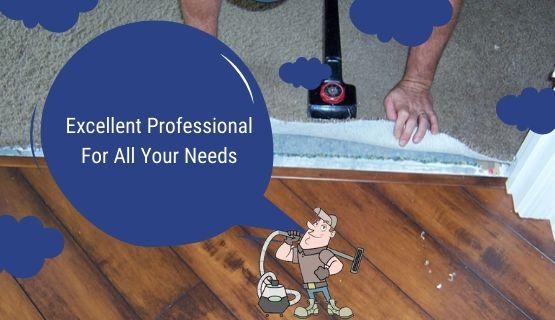Carpet Pet-Damage Repair
