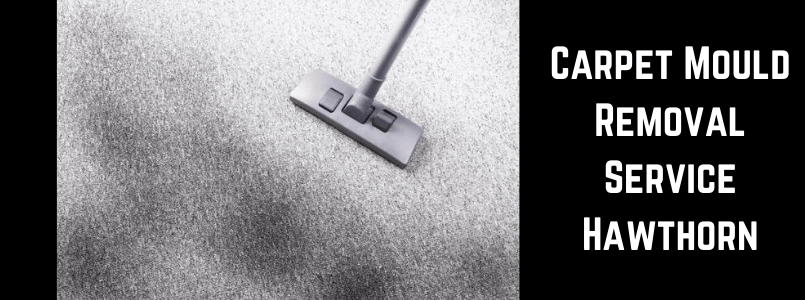 Carpet Mould Removal Service Hawthorn