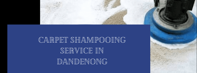 Carpet Shampooing Service In Dandenong
