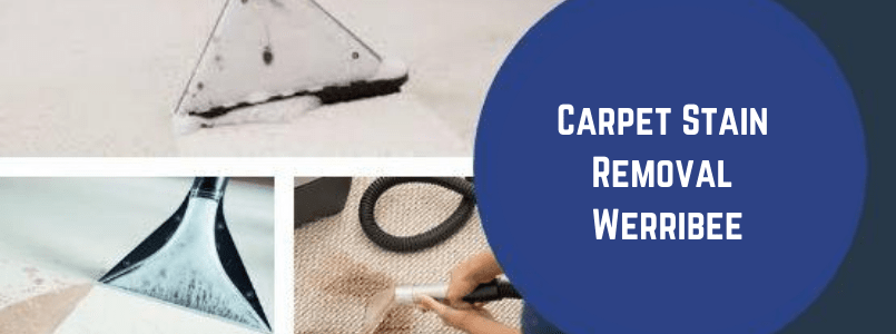 Carpet Stain Removal Werribee