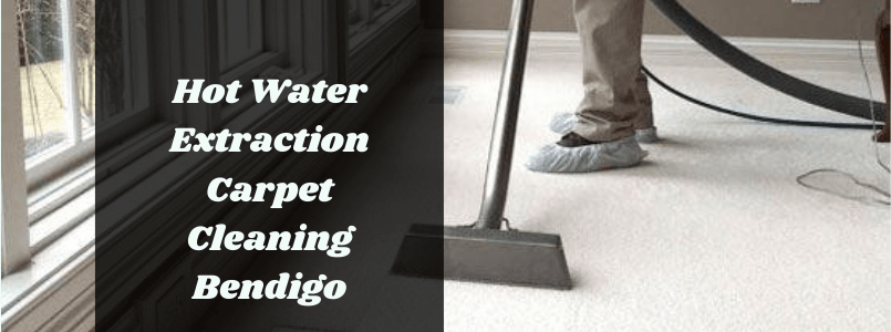 Hot Water Extraction Carpet Cleaning Bendigo