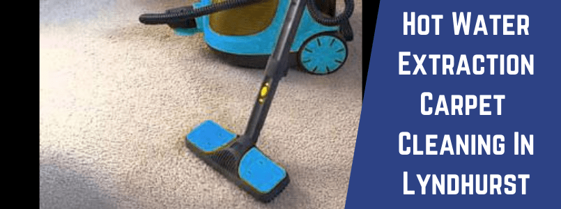 Hot Water Extraction Carpet Cleaning In Lyndhurst