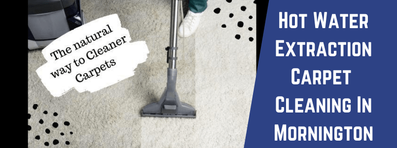 Hot Water Extraction Carpet Cleaning In Mornington