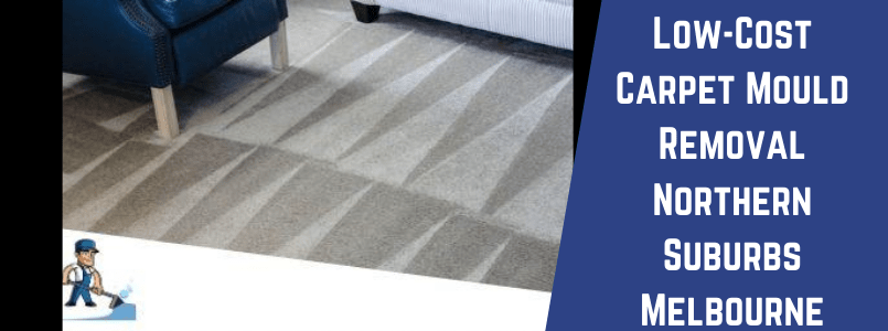 Low-Cost Carpet Mould Removal Northern Suburbs Melbourne