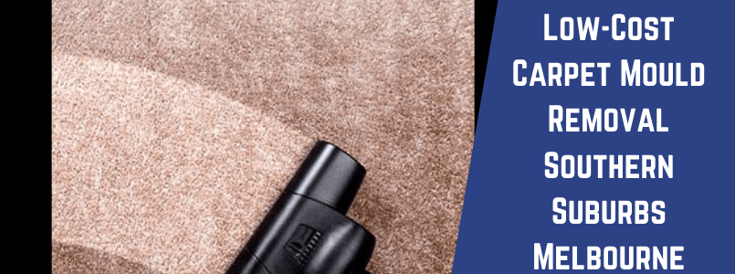 Low-Cost Carpet Mould Removal Southern Suburbs Melbourne