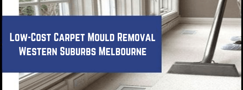 Low-Cost Carpet Mould Removal Western Suburbs Melbourne