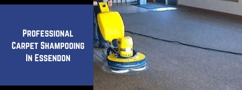 Carpet Pet-Damage Repair Essendon
