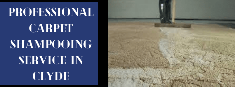 Professional Carpet Shampooing Service In Clyde