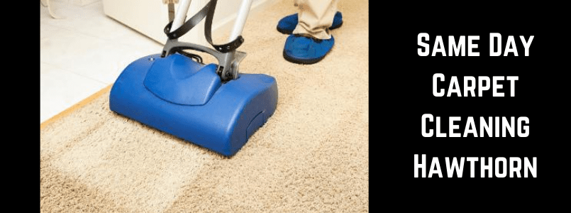 Same Day Carpet Cleaning Hawthorn