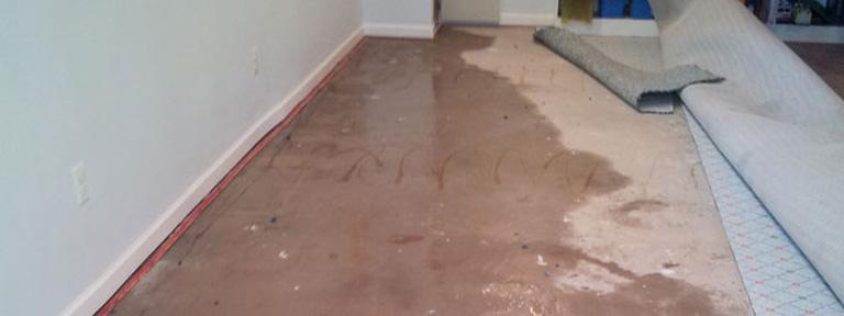 Water Damage to Carpet