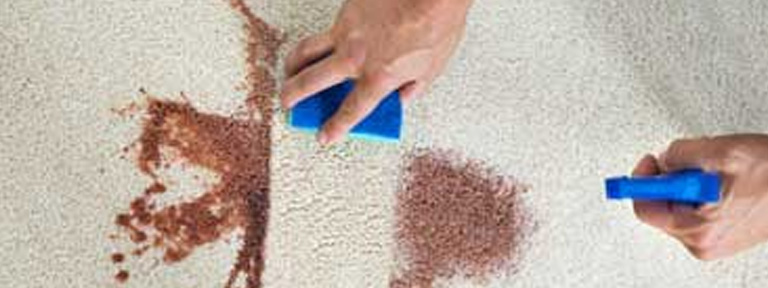 Stain Removal service