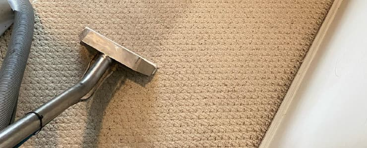 Best Carpet Cleaning Service (2)