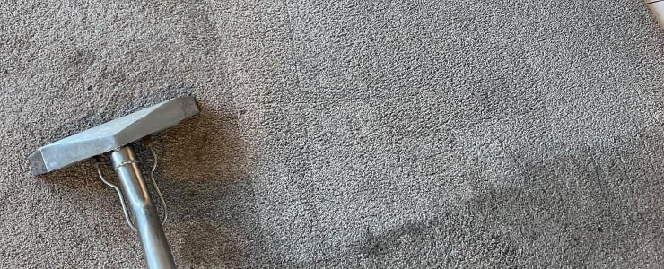 Best Carpet Cleaning Services (2)