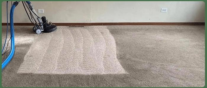 Best Carpet Shampooing Service In Brighton
