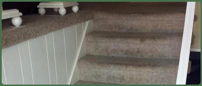 Carpet Stain Removal Dandenong