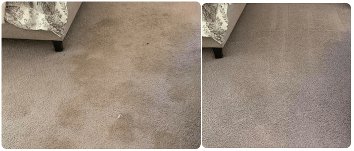 Commercial And Residential Carpet Cleaning Bayswater