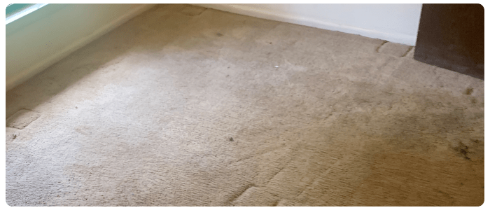 Commercial And Residential Carpet Cleaning Bendigo
